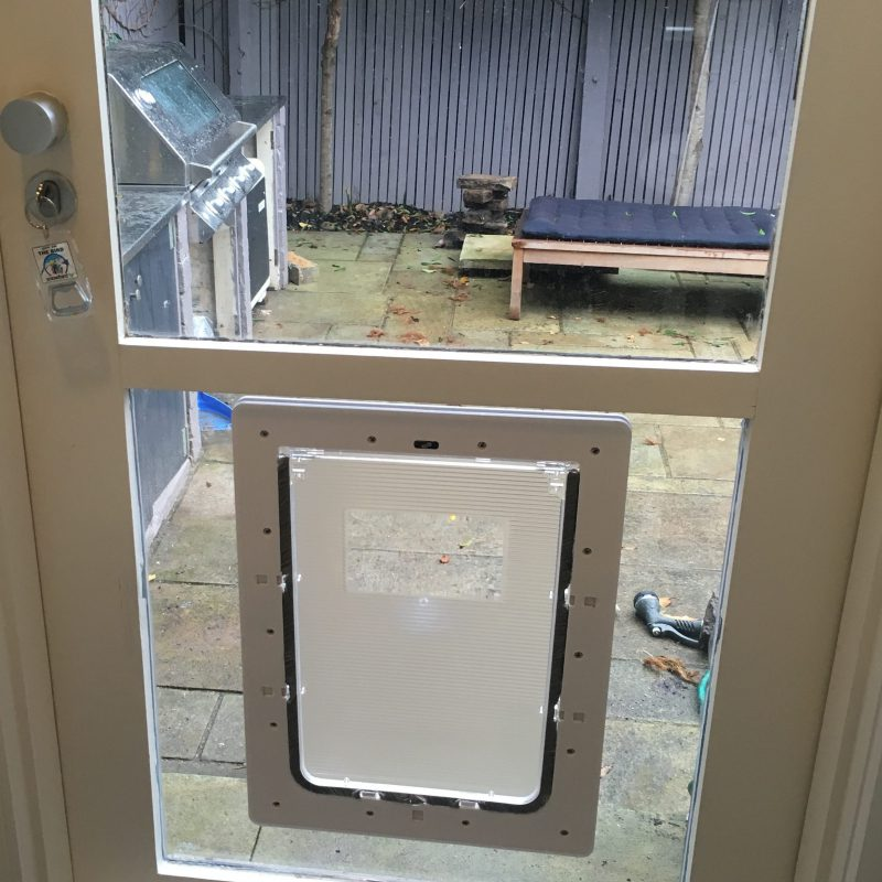 Large Dog Door For Glass Supplied Installed National Pet Doors