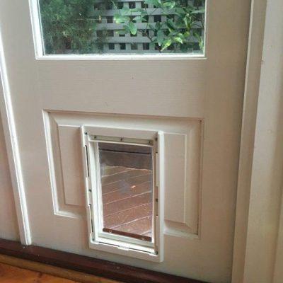 Pet Doors for Timber